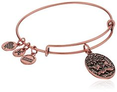 Alex and Ani Because I love you, Sister II Expandable Bangle Bracelet *** Check out the image by visiting the link.