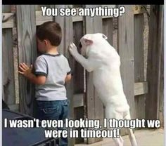 Funny Pictures Of The Day – 51 Pics