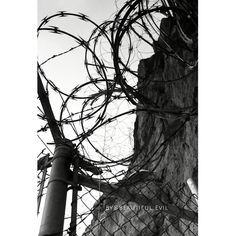 #ghostadventures #zakbagans #crew #nevadastateprison #ep10