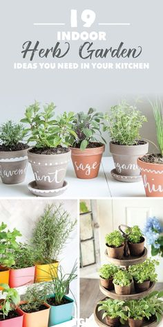 Indoor Herb Garden DIY Herb Garden Ideas Indoor garden ideas for beginners low light Lots of these ideas are too stunning and easy not to try Check out the collection.