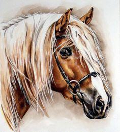 Horse portrait, pferdekunst galerie || palomino english bridle art