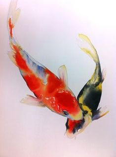 watercolor paintings of koi fish Watercolor Fish, Watercolor Animals, Watercolor Paintings, Mermaid Paintings, Watercolors, Koi Art, Fish Art, Koi Kunst, Koi Painting