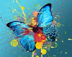 Loving this Blue Butterfly Canvas on Art Et Nature, Abstract Nature, Abstract Art, Abstract Watercolor, Watercolor Paintings, Butterfly Canvas, Butterfly Painting, Blue Butterfly, Butterfly Tattoos