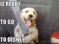 IZ READY TO GO  TO DISNEY!    I think this is what Bella is going to try to do on Wednesday. :)