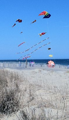 Rehoboth Beach, Delaware April 7, 2013