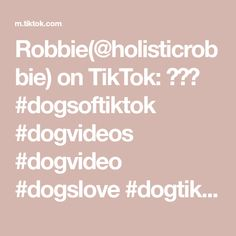 Robbie(@holisticrobbie) on TikTok: 🐶🐶🤪 #dogsoftiktok #dogvideos #dogvideo #dogslove #dogtiktokers #doggy #dogscute #doglover #dogs Dog Lovers, Pets