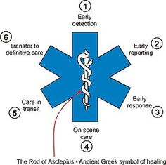 300px-Star of life parts