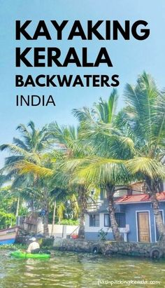 kerala india travel destinations in south asia. places to visit in india. things to do. backpacking south asia travel tips. mumbai to goa to kerala Kerala Travel, India Travel, Thailand Travel, Munnar, Kochi, Kerala Backwaters, Backpacking India, Kerala India, India Asia