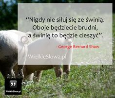 Nigdy nie siłuj się ze świnią... #Shaw-George-Bernard,  #Humor-i-dowcip Words Of Wisdom Quotes, Life Quotes, More Words, Sport Motivation, Humor, In My Feelings, Inspire Me, Philosophy, Quotations