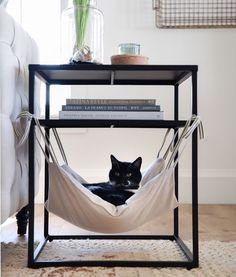 Cat Hammock - Places Like Heaven- Katzen-Hängematte – Places Like Heaven Cat Hammock cat hammock Diy Cat Hammock, Hammock In Bedroom, Hammock Ideas, Diy Cat Bed, Hammock Bed, Cat Room, Pet Furniture, Furniture Design, Plywood Furniture