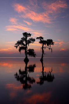 The Sisters - Cypress trees on Lake Maurepas in South Louisiana before sunrise, © Jude Haase via 500px