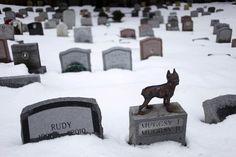 APNewsBreak: NY pet cemetery deemed historic - Yahoo! News