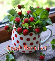 Good Morning Greetings, Good Morning Wishes, Good Morning Everyone, Good Morning Good Night, Good Morning Flowers, Morning Blessings, Strawberry, Fruit, Faith Quotes