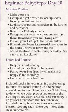 Ultimate flylady planner Us Letter Half Letter Organisation Hacks, Organising Tips, Desk Organization, Organizing, Fly Lady Cleaning, Geek House, Daily Shower Spray, Today Meme, Cleaning Hacks