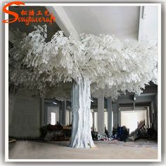 https://www.alibaba.com/product-detail/large-outdoor-type-white-banyan-trees_60562631284.html