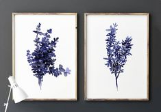 Thyme Set of 2 Plants And Edibles Royal Blue by ColorWatercolor