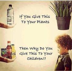 GNLD GOLDEN products NEOLIFE NUTRIANCE  FRANCESCA MODUGNO distributor:  Alimentazione, ai bambini servono più educazione ...
