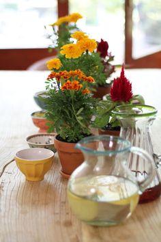 verde a la mesa