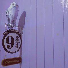 A coruja veio mas não trouxe minha carta pra Hogwarts... O link tá no meu perfil se quiser saber como eu fiz... 😜 ... ... #DIY #doityourself #MagiaNerd #Youtube #coruja #harrypotter #plataforma #decor #Vintage #VSCOcam #bestvsco #Vscogram #vscohub #vscogrid#huntgram #Vscogaleria #alternative #alternativegirl #grungegirl #tumblrgirl #Pinterest #parededevidro #instamoment #Instatc #revolucionista #tc #Tumblr #instashot #projetotc #fotoxigenio