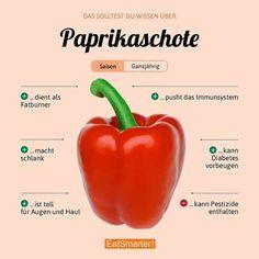 Wie esst ihr Paprika am liebsten? Hier gibt es die 15 beliebtesten Rezepte: eatsmarter.de/rezepte/rezeptsammlungen/die-15-besten-paprika-rezepte#/0