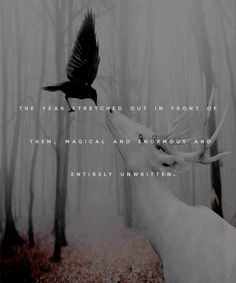 I Fall In Love, My Love, Quoth The Raven, Raven King, Maggie Stiefvater, Book Characters, Welsh, Boys, Movie Posters