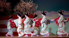 17th Miyako no Nigiwai ~ Scene 5 Nagauta Genroku Hanami Odori Geiko Mari, Kimika, Manami, Kogiku, Mayuha, Mamesuzu, Koai, Suzuko and Mihoko Image by Onihide