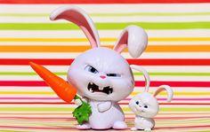 野兔, 邪恶, 雪球, 电影人物, 宠物, 滑稽, 可爱, 搞笑