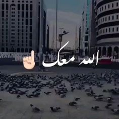 Ibn Arabi, Muslim Pray, Neon Signs, Arabic Calligraphy, Videos, Art, Art Background, Kunst, Arabic Calligraphy Art