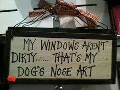 Dakota.... house and car windows lol