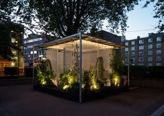 "Asif Khan and MINI bring calm ""forests"" to London inner city"