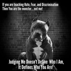 This pretty pitbull puppy will bring you joy. Dogs are wonderful creatures. Pitbull Terrier, Amstaff Terrier, Bull Terriers, Terrier Mix, I Love Dogs, Puppy Love, Cute Dogs, Dog Quotes, Animal Quotes