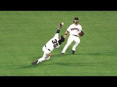 Awesome Videos: MLB   BEST OF THE BEST 2017