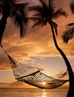 Well it's sunset... Here is my hammock, now  where will I find Hawaii?