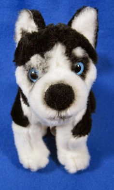 "Disney Shasta Snow Buddies Siberian Husky Puppy Dog 7"" Plush Stuffed Animal #Disney"