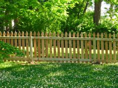 gothic wooden fences and gates - Google Search