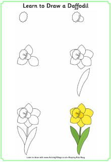 Our daffodils are blooming! thought I would send this Learn to draw a daffodil p. - Our daffodils are blooming! thought I would send this Learn to draw a daffodil printable to my Comp - Doodle Drawings, Animal Drawings, Easy Drawings, Painting & Drawing, Plant Drawing, Drawing Lessons For Kids, Art Lessons, Learn To Draw Flowers, How To Draw Flowers Step By Step