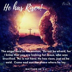 Bible Verses Quotes, Faith Quotes, Scriptures, Praise The Lords, Praise God, Old Country Churches, He Has Risen, Matthew 28, Christ The King