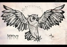 Image from http://tattoostime.com/images/255/open-wings-owl-drawing.jpg.