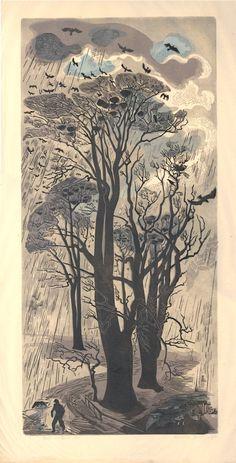 Gertrude Hermes, 1950 (via British Museum) Linolschnitt. British Museum, Illustration Art, Illustrations, Wood Engraving, Woodblock Print, Tree Art, Landscape Art, Oeuvre D'art, Painting & Drawing