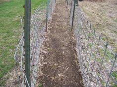 Hickery Holler Farm: Vegetable Garden