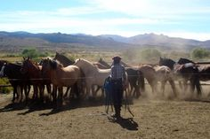 Patagonia's Traditional Gaucho Pack Trip: 2-10+ Days. Horse riding holiday Patagonia. www.stable-mates.com