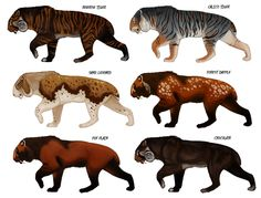 Speculative Smilodon colors by Viergacht on DeviantArt