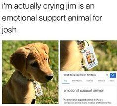 we love you Josh <3