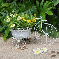 Bicycle Tricycle Wire Iron plant Planter Stand Green Office Outdoor Home Garden decoration design (M) #EarthlyLiving