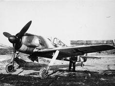 Fw 190 on field airfield
