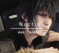 Noctis Lucis Caelum = Light the night sky (roughly) or Night sky (Noctis Luci)