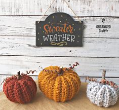 Easy Fall Signs & Cute Crocheted Pumpkins | Organized Clutter Easy Diy Crafts, Diy Craft Projects, Fall Crafts, Diy Halloween Decorations, Thanksgiving Decorations, Halloween Crafts, Dollar Tree Christmas, Dollar Tree Crafts, Halloween Stencils