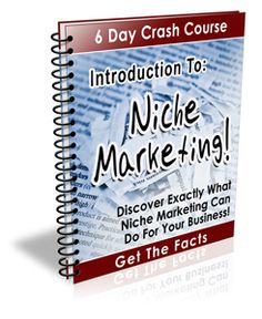 """Online Affiliate Marketing Tip: Get your Free Crash course. Inside every lesson of the """"Introduction To Niche Marketing"""" Crash Course you'll learn valuable information that will show you how to use niche marketing techniques for your business! Home Business Opportunities, Business Tips, Marketing Techniques, Affiliate Marketing, Knowledge, Learning, Day, Promotion, Website"""