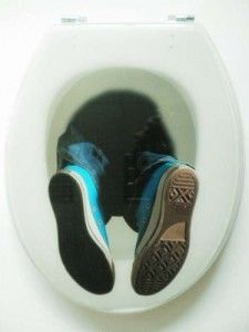 1000 Images About Toilet Seat Design On Pinterest