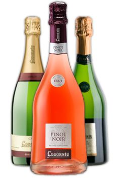 family wines and cavas (Spanish champagne)